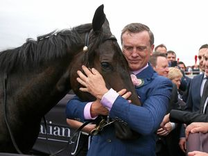 COAST HOPE: Trainer David Vandyke cuddles his horse Yankee Rose after winning the Spring Champion Stakes.