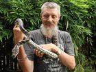 AMATEUR snake catchers have been putting their lives at risk during a year in which snake sightings have climbed, says an accredited snake catcher.