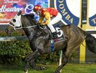 Johnny Be Quick and apprentice Adam Spinks completing their win in last night's Class 3 Handicap at Clifford Park.