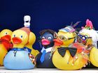HEAVY winds ruffled few feathers at the 25th Rotary Great Duck Race in Ballina on Sunday.