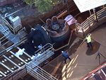 Images from the scene after four people died on a ride at Dreamworld at the Gold Coast