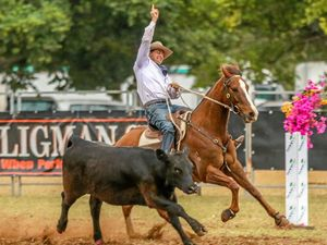 Southern siblings steal the show at campdraft