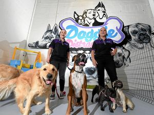 Doggy day care paw-fect for pet owners