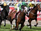 Find out more about Melbourne Cup with these trivia tidbits
