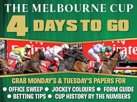 Thirty two horses remain in Melbourne Cup