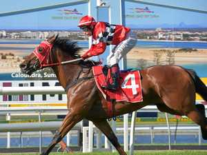 ACROSS THE LINE: Jeff Lloyd takes I'll Tell You Soon on to win race six at Corbould Park.