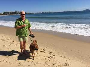 Dog owner takes protest against ban to beach