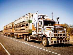 End of the road for Roma Saleyards access trial