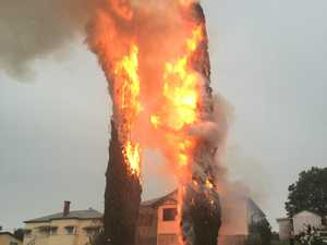 VIDEO: Intense fire after lightning strikes pair of pines