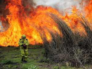 FIRE RISK: This could easily be the result of not controlling gamba grass on your property.