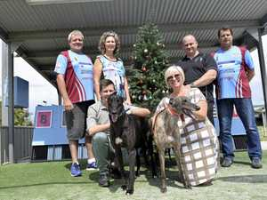 MAKING A DIFFERENCE: Brothers Cricket Club president Tim Kinanne, CRANES community support programs lifestyle coordinator families Michelle Allen, St Josephs Cowper business development manager Duncan McKimm with greyhound Johnno, St Josephs Cowper foster care coordinator Tonia FitzCosta with greyhound Cindy, CRANES operations director John Lysaught and Brothers Cricket Club secretary Durand Hartz at Grafton Greyhound Racing Club..