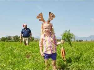 Woolies' new reindeer carrots hope to feed Santa's fliers