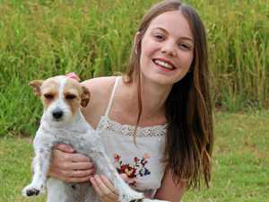 RAISING HOPE: Alice Thorn, with help from her rescue dog Penny, is leading a fundraiser to buy a Christmas present for every shelter animal on the Coast.