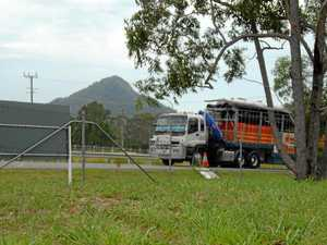 The vacant elevated industrial estate land in Cooroy at Taylor Crt now has a sold sign on it Noosa Council considers its latest service station and food outlet application.