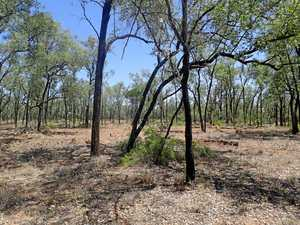 Land clearing concerns