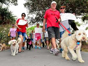 We are only just getting started: doggone protesters fired up