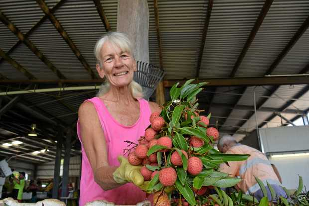 LONG-TIME LYCHEE LOVER: Bundaberg's Vicky De Louwer has packed lychees at Electra Farms for 12 years.
