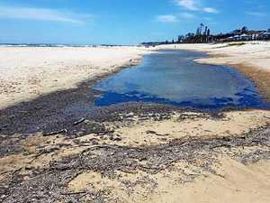 Kingscliff Beach causes a stink