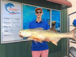 Fishing report: Anglers make most of pelagic action