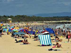 Green group calls for cap on Noosa daytrippers
