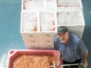 Prawns prices at a stand still for fishers after import ban