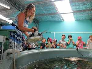 SPLASH: This green sea turtle, held by Australian Seabird Rescue general manager Kath Southwell, splashed some of the children on a tour of seabird rescue's headquarters.