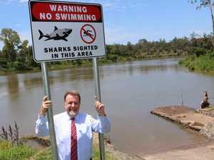 SHARK! Tully warns of dangers lurking in Brisbane River