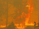 Evacuation warnings issued as multiple fires in Kurri Kurri region burn out of control