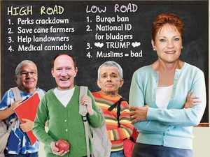 Strange Politics: Follow Pauline on high and low roads