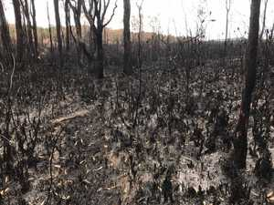 Inside the fire zone: Coolum blaze devastation