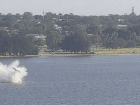Two dead in horror plane plunge at Australia Day fireworks celebration