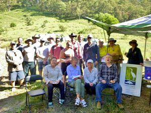 Community shows commitment to saving Tweed koalas