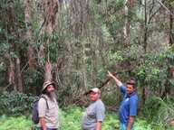 Local Kabi Kabi Traditional Owner Kerry Jones and family recently undertook an interpretive research project for the place name meaning of Yaroomba.