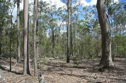 Get away from those annoying neighbours with this lightly timbered property.  218 acres (88.35ha) si...