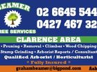BEAMER TREE SERVICES
