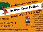 Active Tree Fellas
