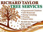 RICHARD TAYLORE TREE SERVICES