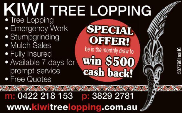 KIWI TREE LOPPING    Tree Lopping  Emergency Work  Stumpgrinding  Mulch Sal...