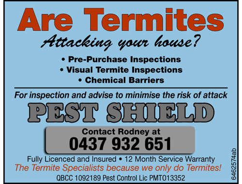 Are Termites attacking your house?