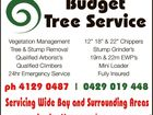 Budget Tree Services