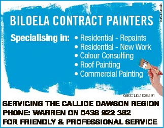 Specialising in: * Residential - Repaints * Residential - New Work * Colour Consulting * Ro...