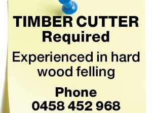 TIMBER CUTTER