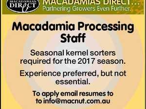 Macadamia Processing Staff