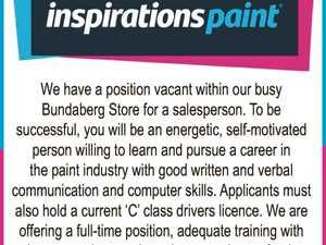 Paint Salesperson