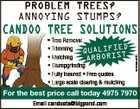 PROBLEM TREES?