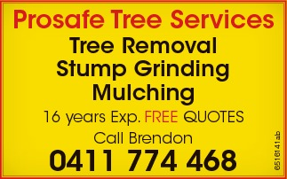 Tree Removal  Stump Grinding  Mulching   16 years Exp. FREE QUOTES Ca...