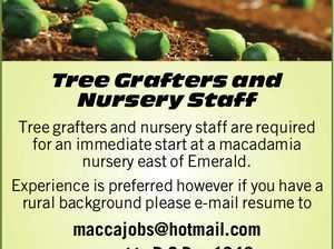 Tree Grafters and Nursery Staff