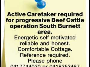 Active Caretaker