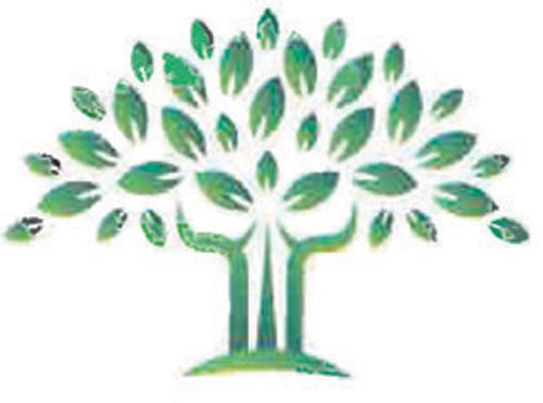COASTAL TREE SERVICES AND CHIPPING   Matt and Dan P:0458 305 397 E: coastaltrees...