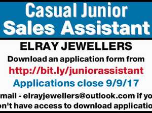 Casual Junior Sales Assistant